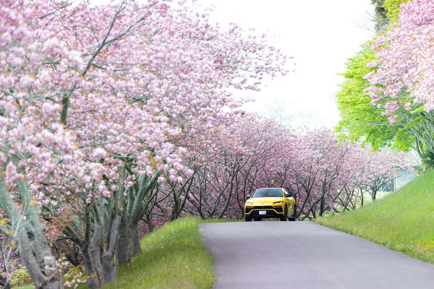 Bộ-đôi-Lamborghini-Urus-vượt-hơn-6.500-km-trong-hành-trình-xuyên-Nhật-Bản (41).jpg