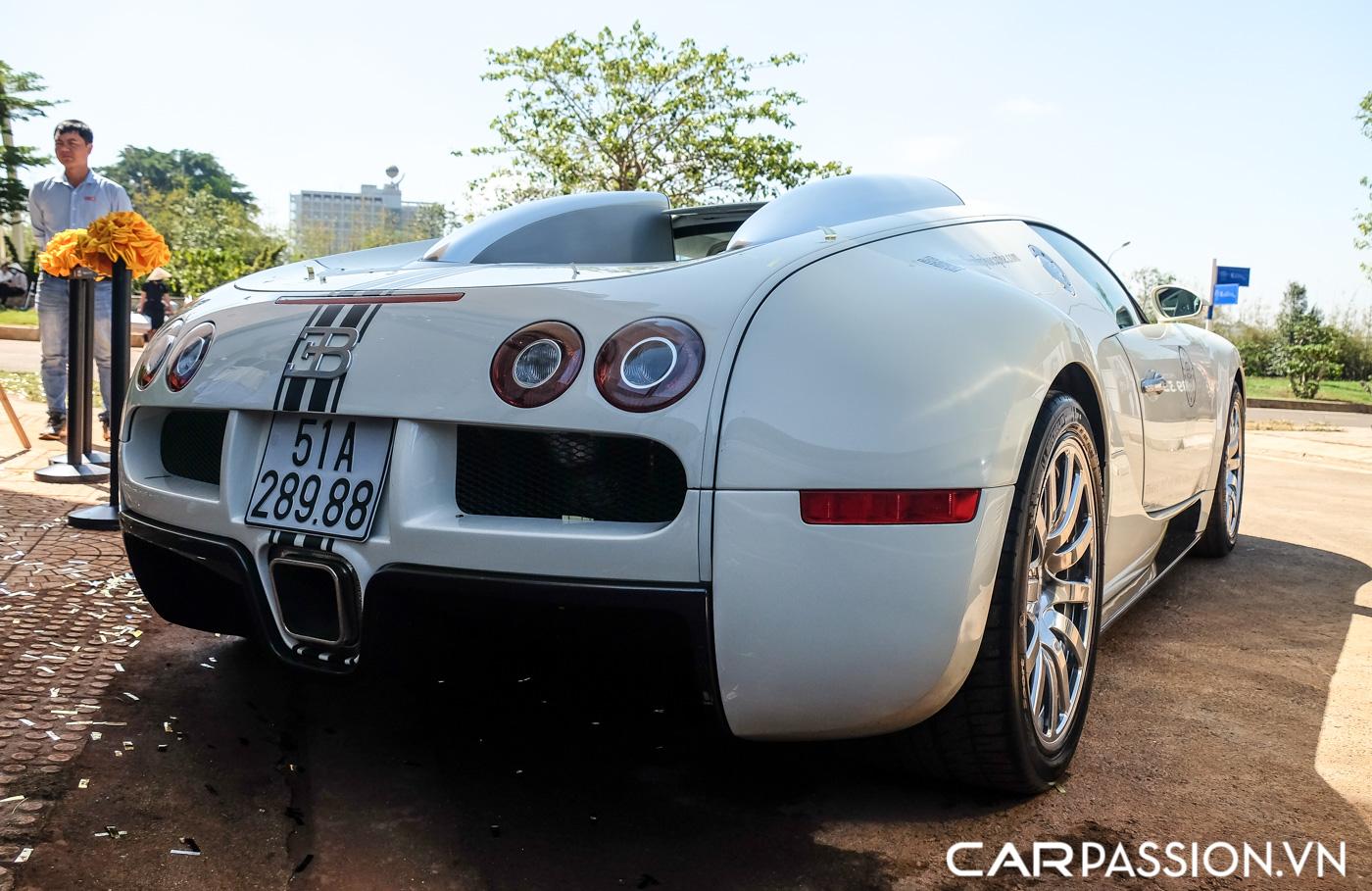 Bugatti Veyron (16).JPG