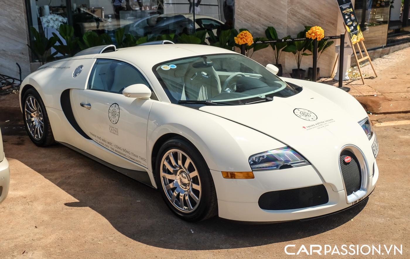 Bugatti Veyron (23).JPG