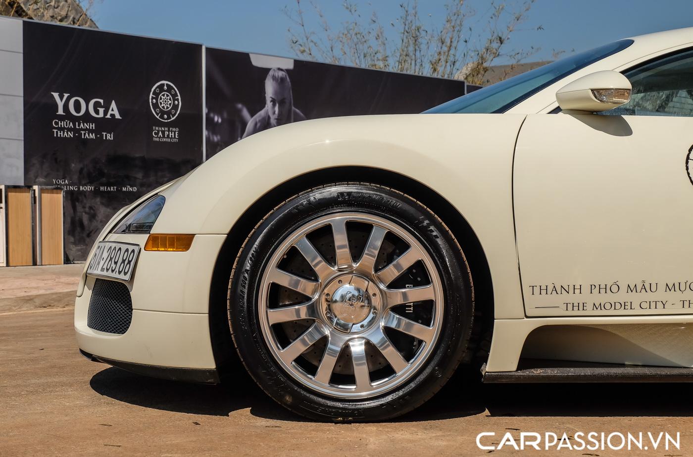 Bugatti Veyron (7).JPG