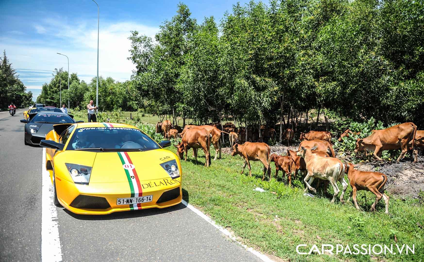 CP-Hành trình siêu xe CarPassion 2011 Day 2 (245).jpg