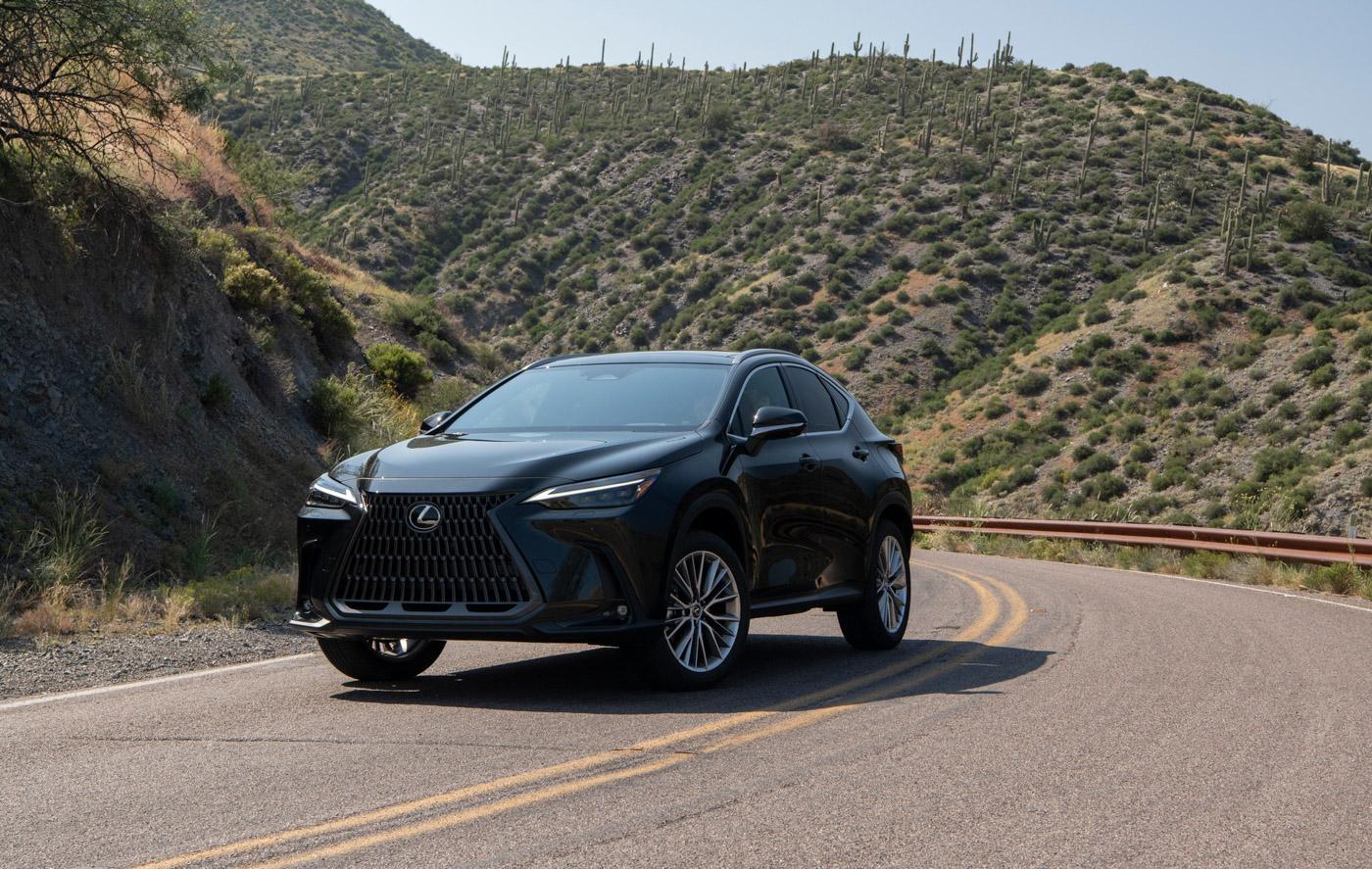 Lexus NX (13).JPG