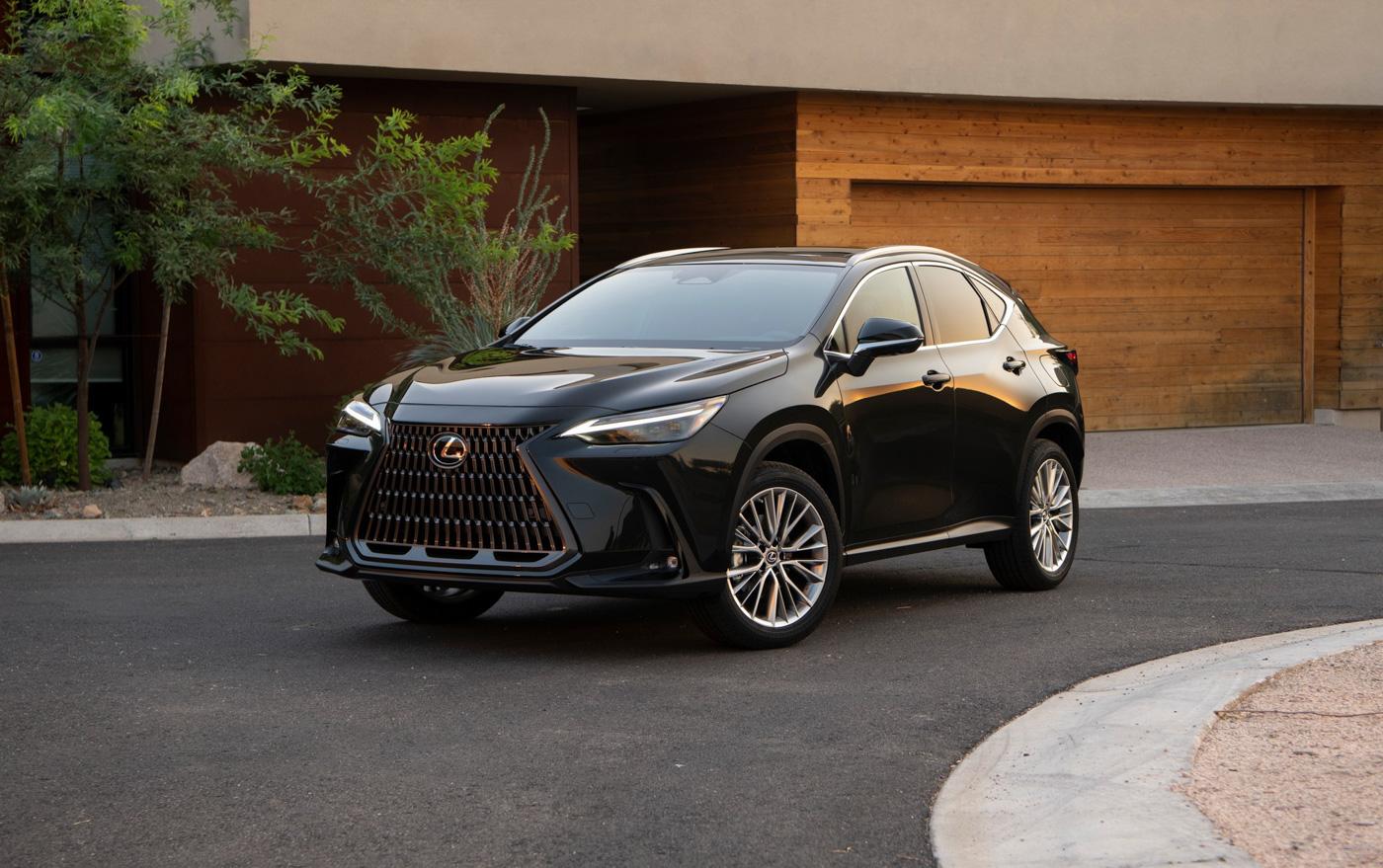 Lexus NX (16).JPG