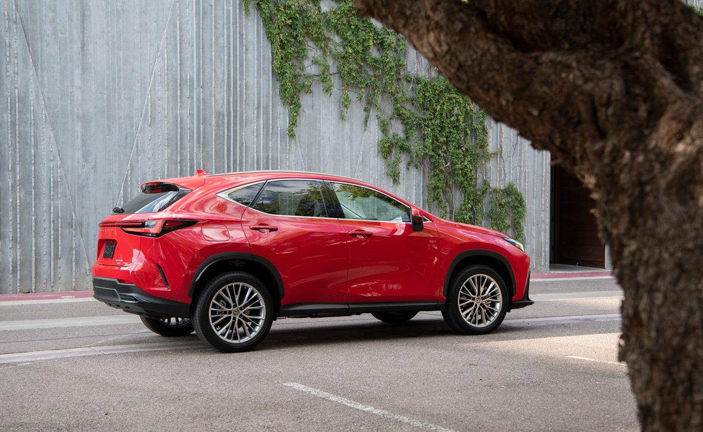 Lexus NX (3).JPG