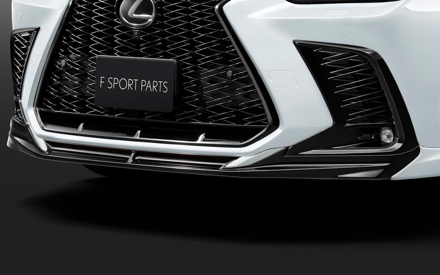 Lexus NX TRD (11).JPG