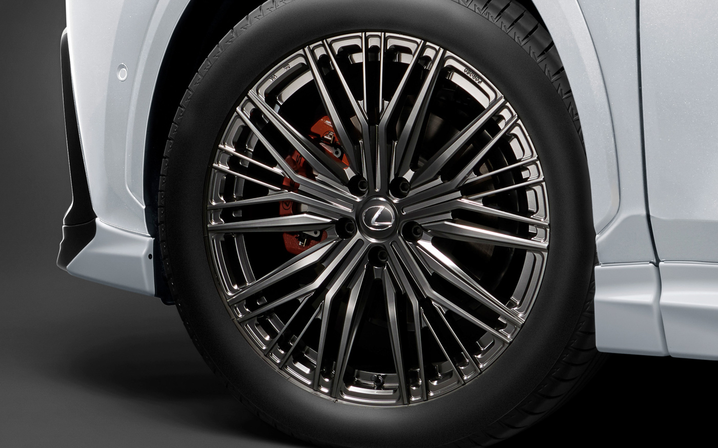 Lexus NX TRD (6).JPG