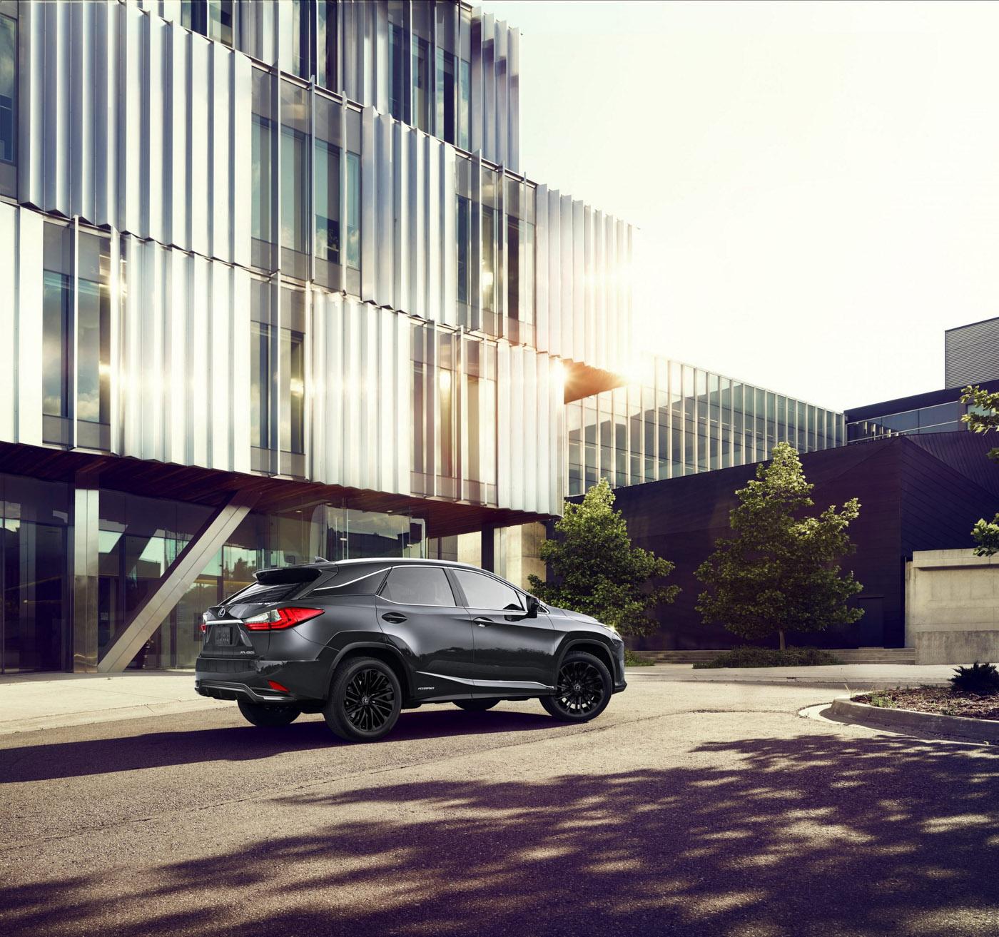 Lexus RX L Black Line (3).JPG