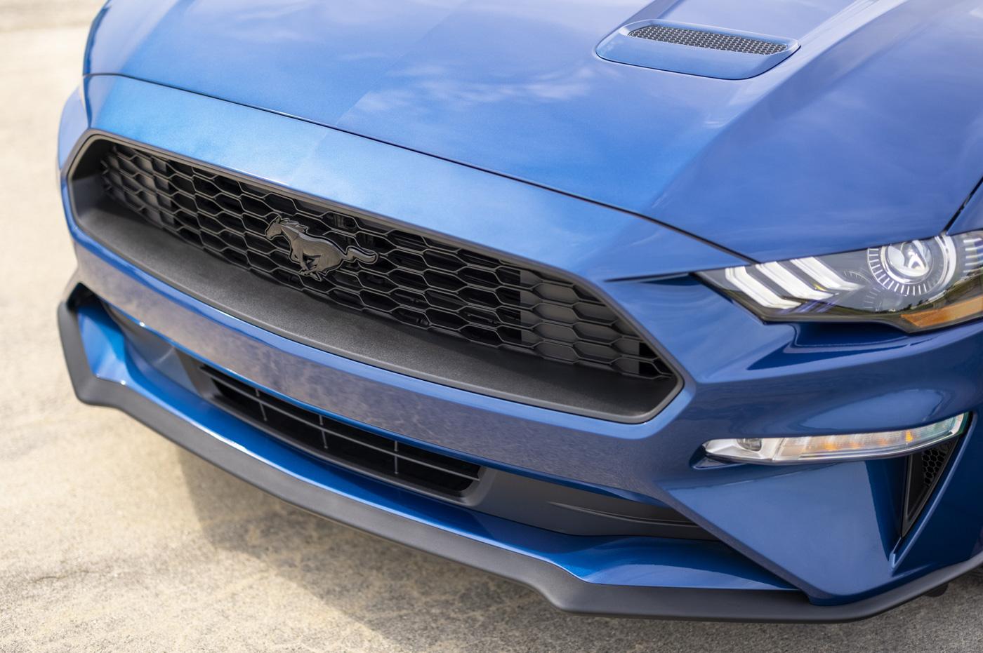 Mustang Special Edition (17).JPG