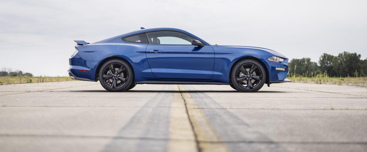 Mustang Special Edition (21).JPG