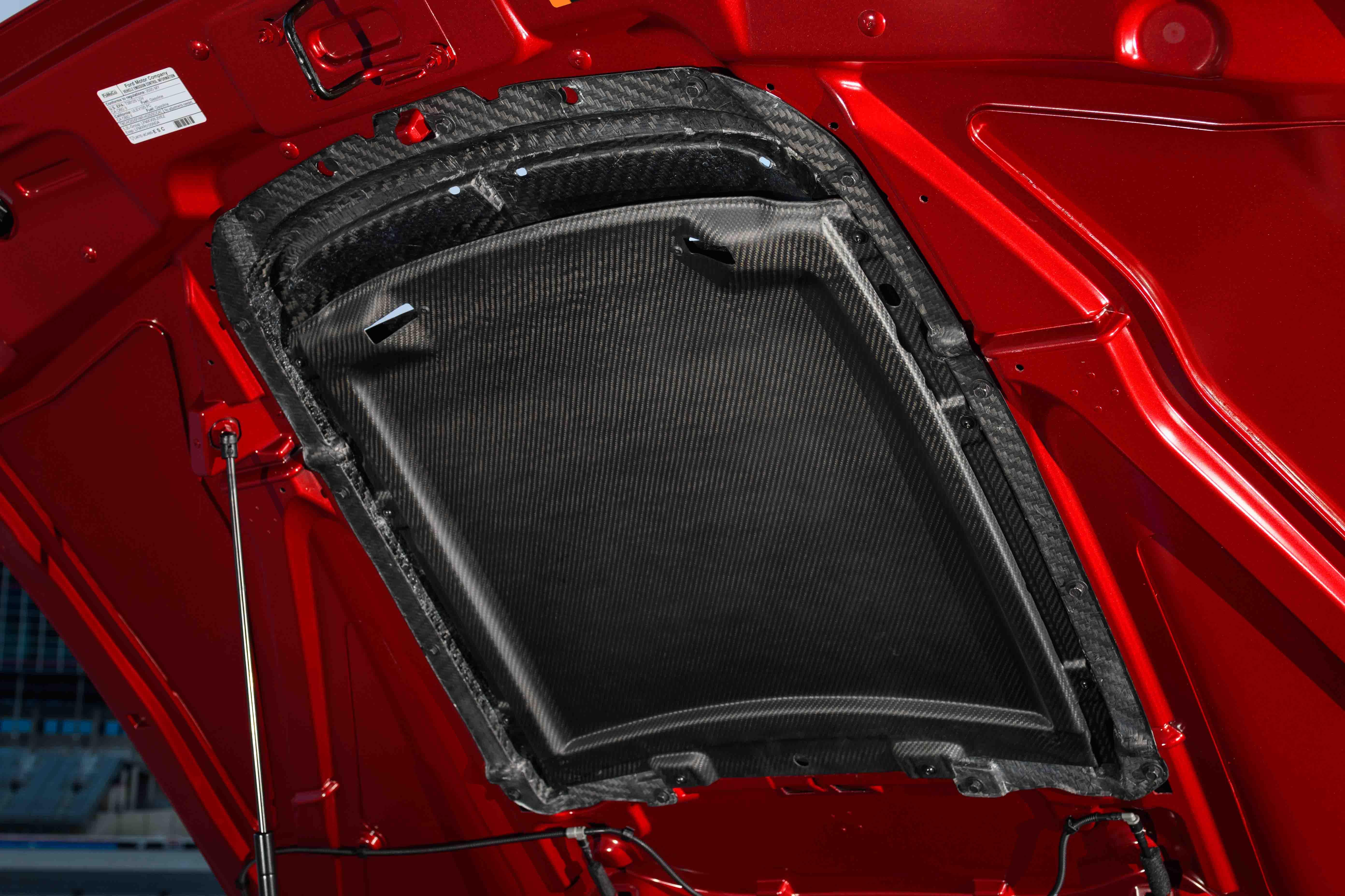 Mustang_GT_500_Carbon_Fiber_Rain_Tray_01.jpg