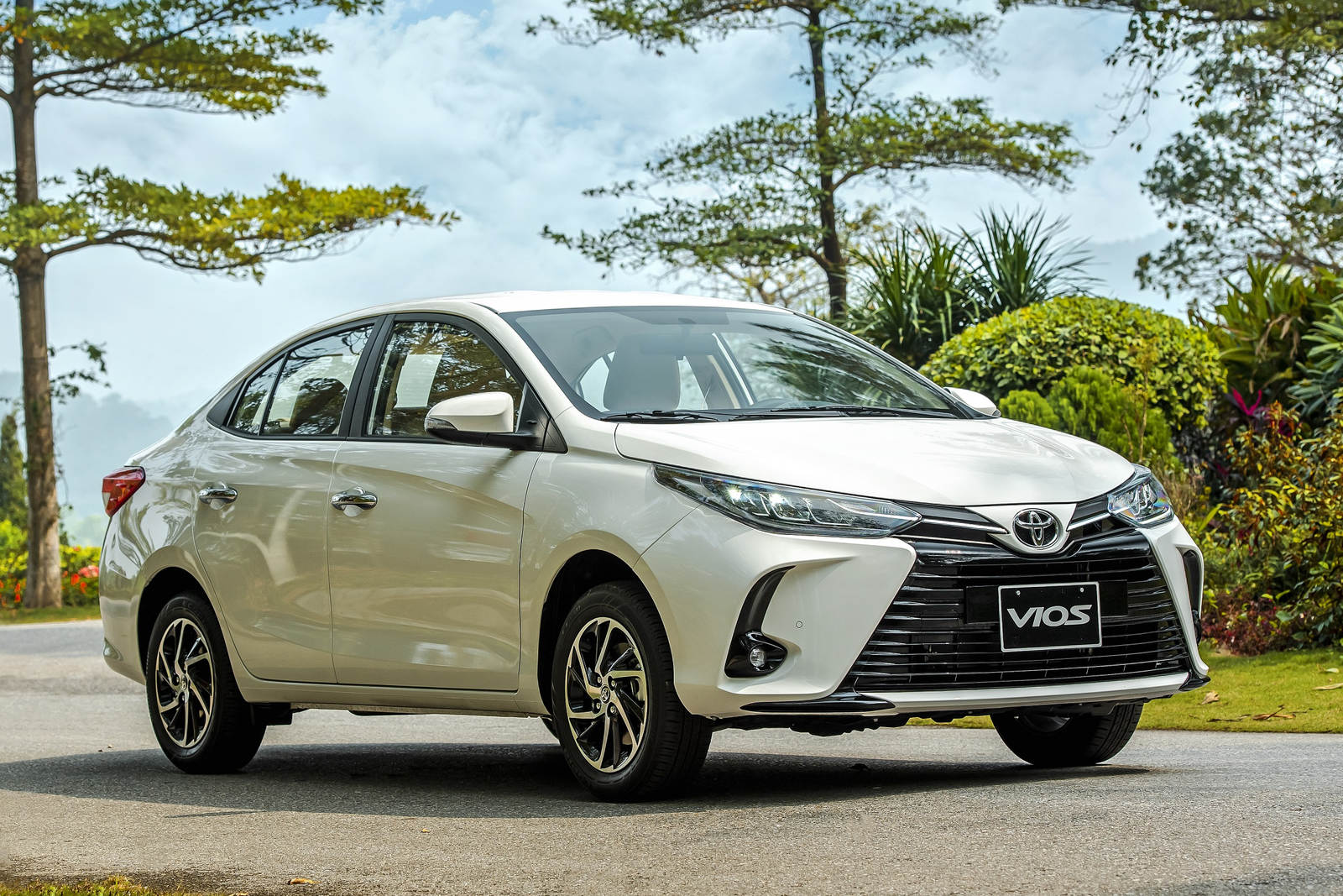 Toyota Vios.jpg