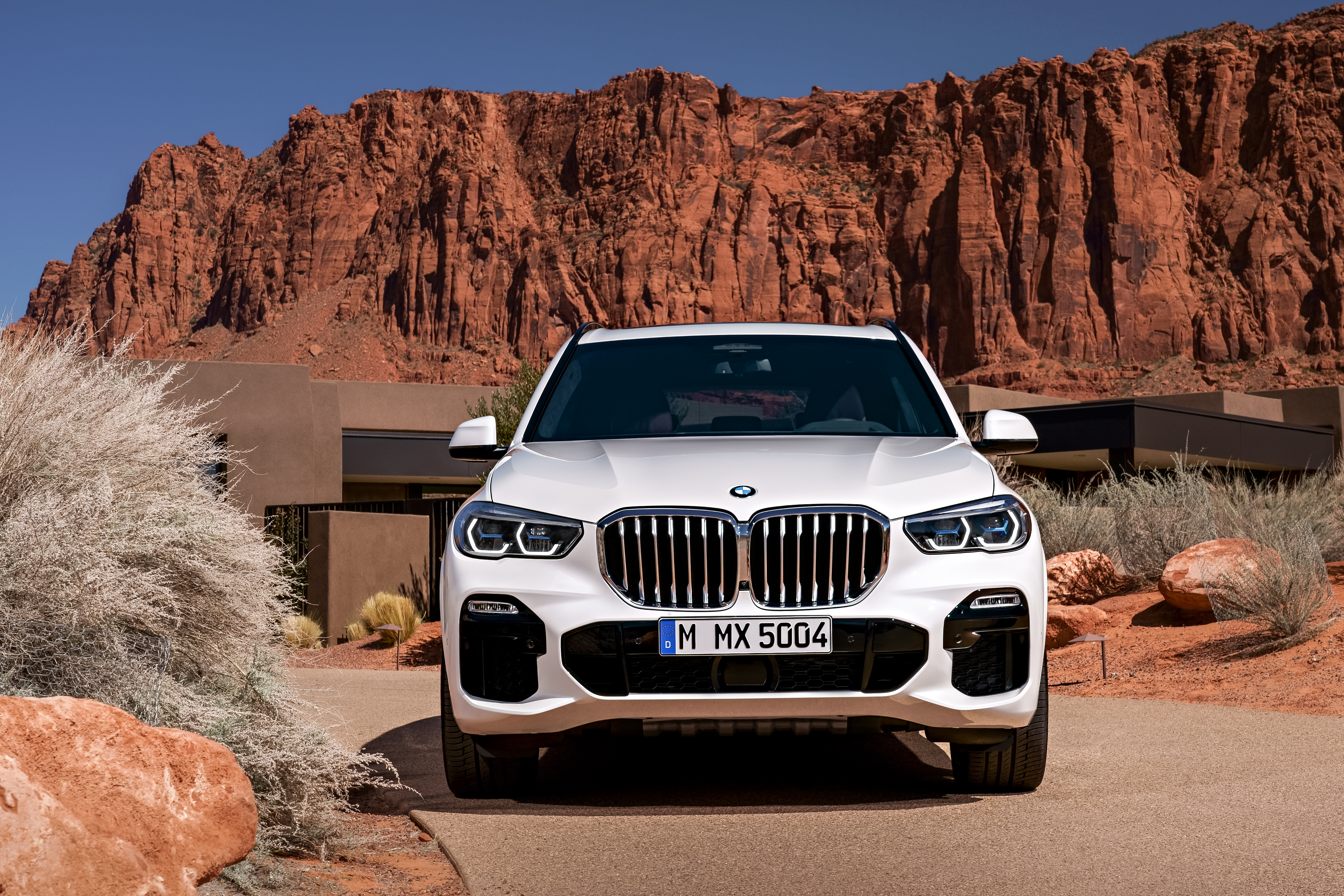 P90304015_highRes_the-all-new-bmw-x5-0.jpg